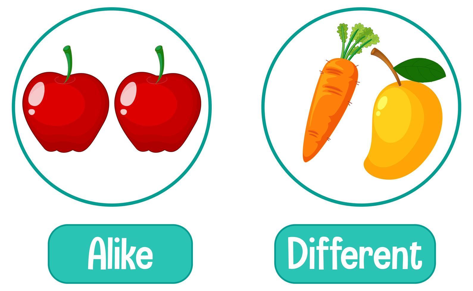 tegengestelde woorden met gelijk en verschillend vector