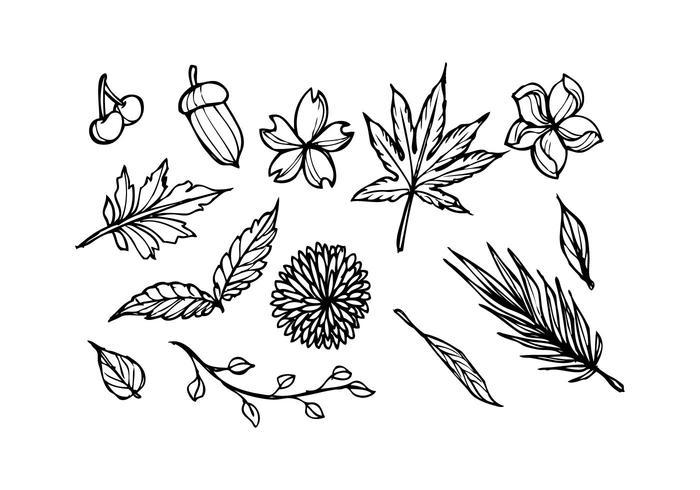 Gratis Floral Sketch Icon Vector