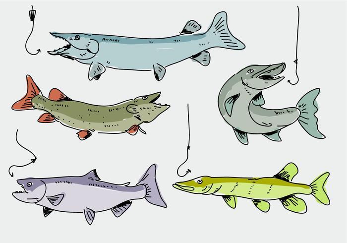 Muskie Fish Hand Drawn Krabbel Vectorillustratie vector