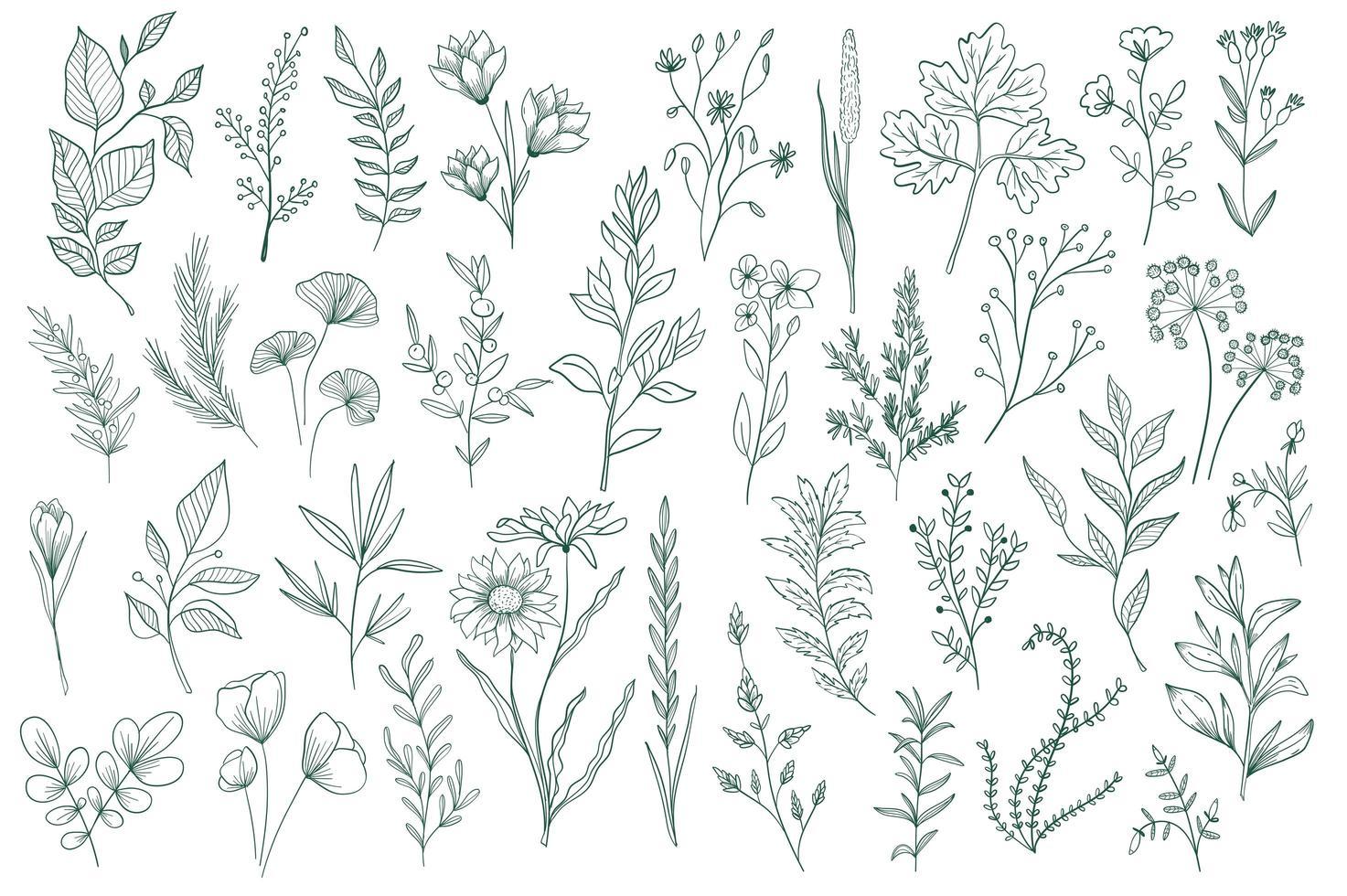 bundel hand getrokken bloemen decoratieve elementen vector