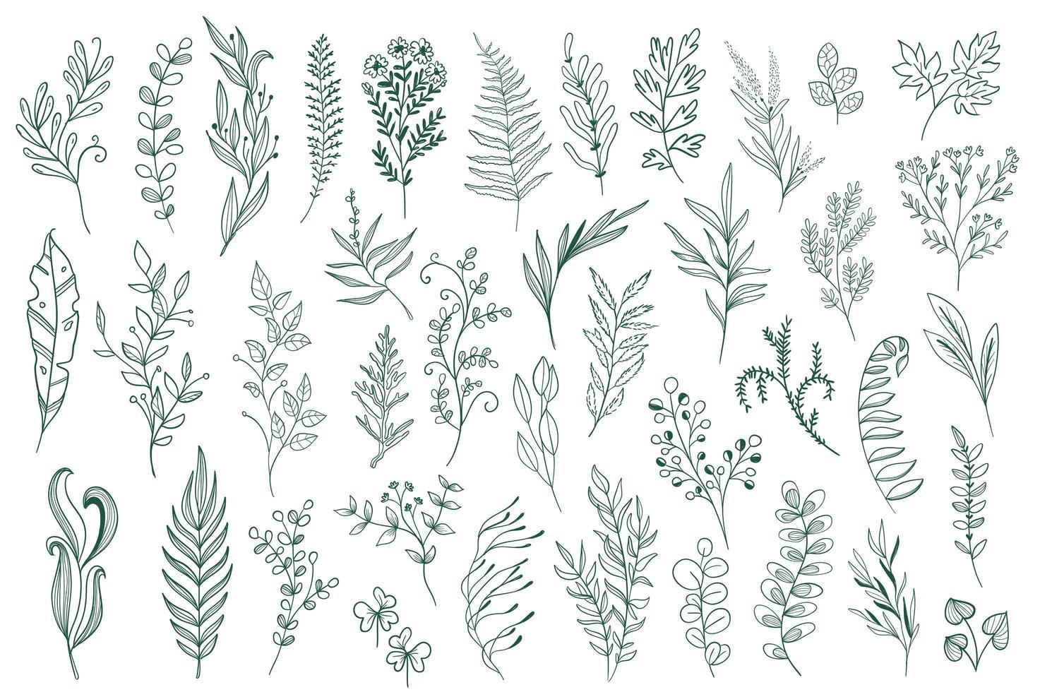 hand getrokken florale decoraties vector