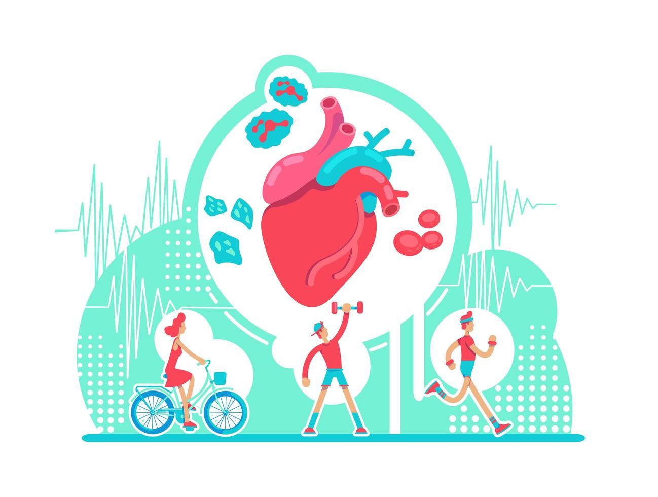 cardiovasculaire systeem gezondheidszorg vector