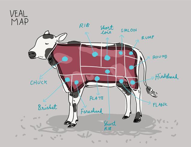 Het kalfsvlees sneed Kaarthand getrokken vectorillustratie vector