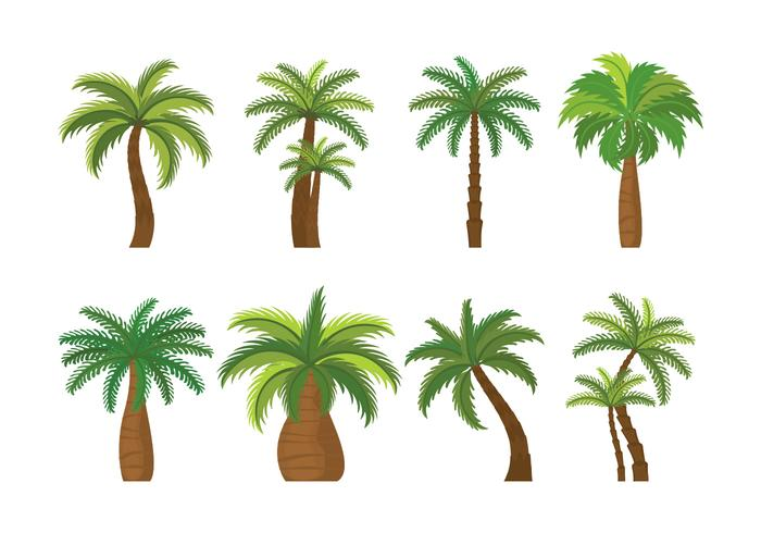palmier pictogrammen instellen vector