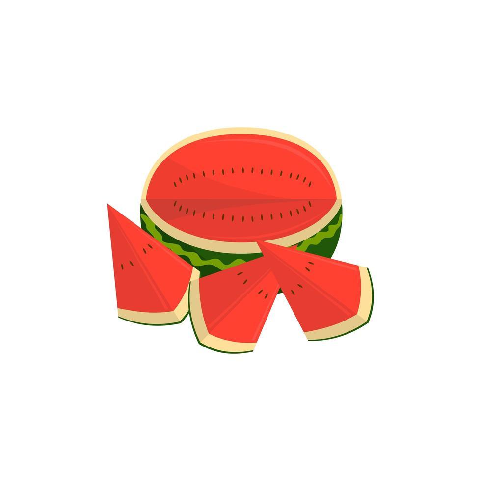 watermeloen fruit en stukjes illustratie vector