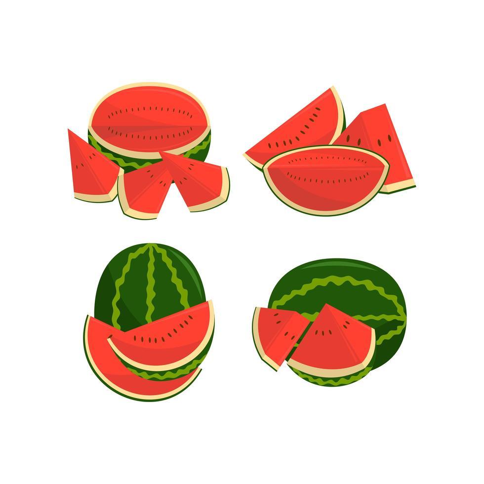 watermeloen fruit en stukjes illustratie set vector