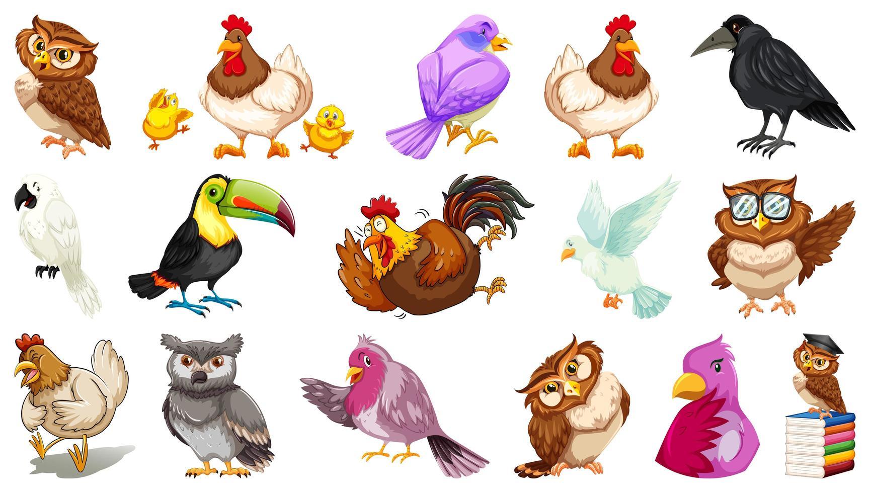 set van verschillende vogels cartoon stijl geïsoleerd op een witte achtergrond vector