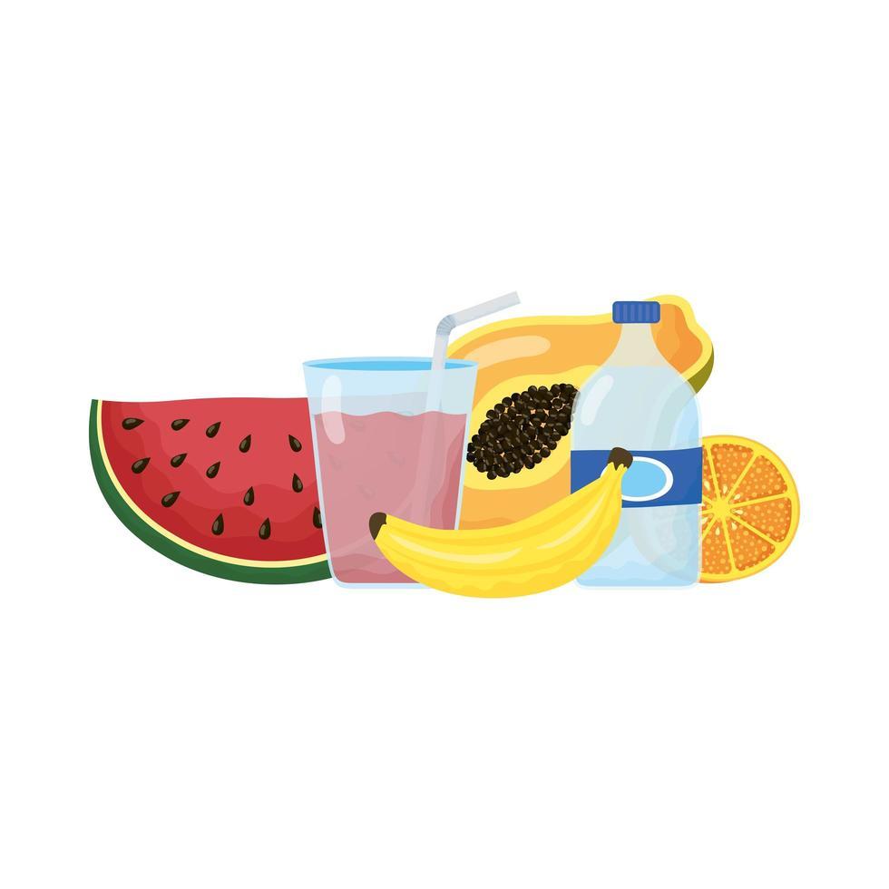 gezonde voeding levensstijl geïsoleerde pictogrammen vector