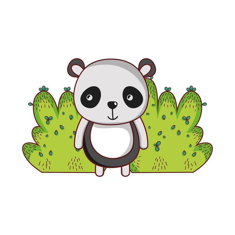 schattige dieren, panda gebladerte bush natuur ontwerp vector
