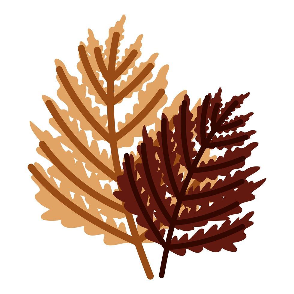 gebladerte takken bladeren herfst geïsoleerd ontwerp witte achtergrond vector