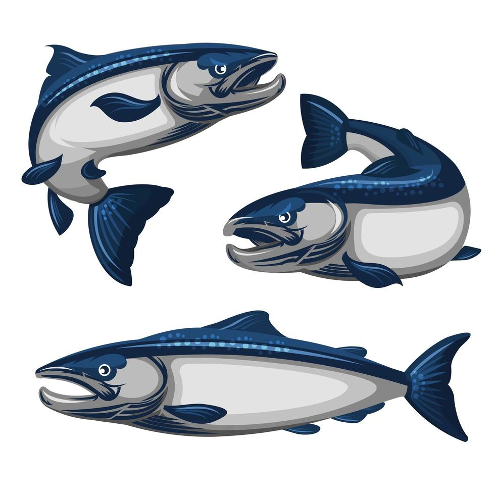 blauwe zalm vis set vector