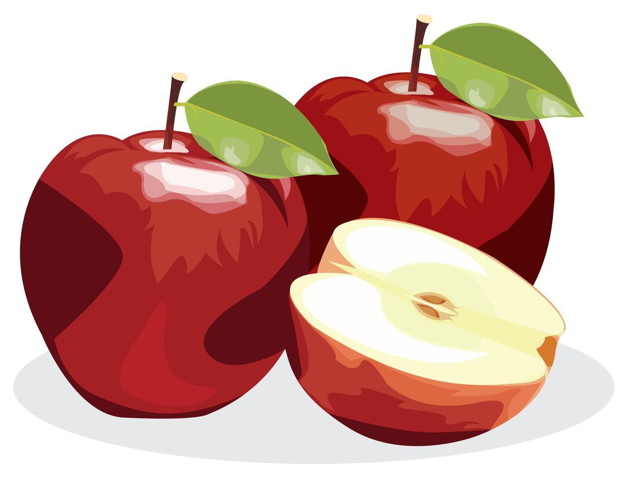 rijp rood appelfruit met halve appel en groen die appelblad op witte achtergrond wordt geïsoleerd. vector