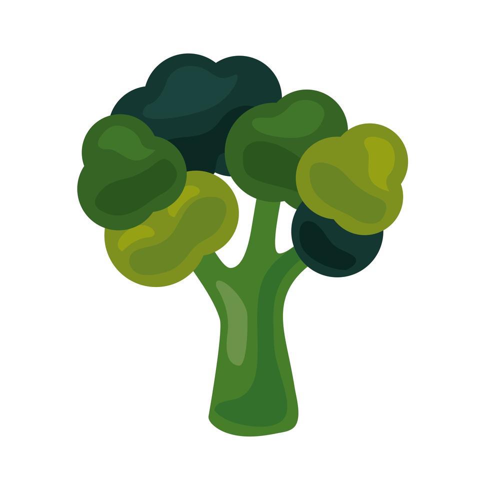 verse broccoli plantaardige gezonde voeding pictogram vector