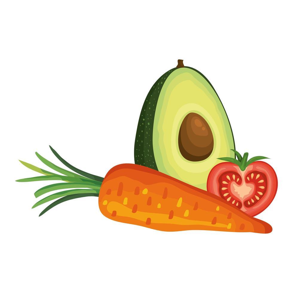 verse tomaat met wortel en avocado vector