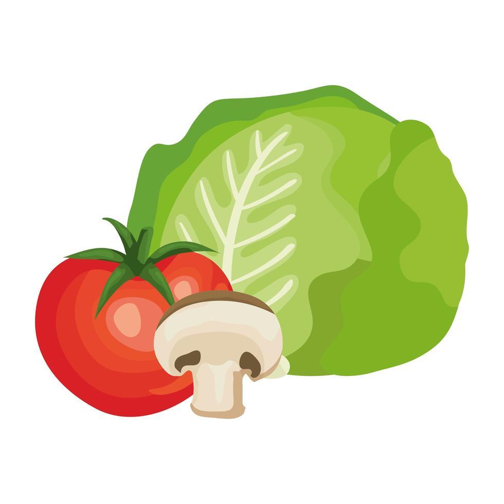 verse tomaat met champignons en sla vector