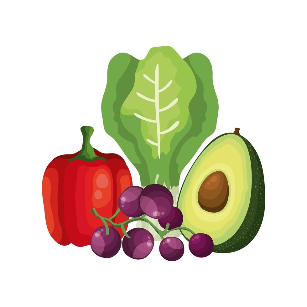 verse groenten en druivenfruit vector