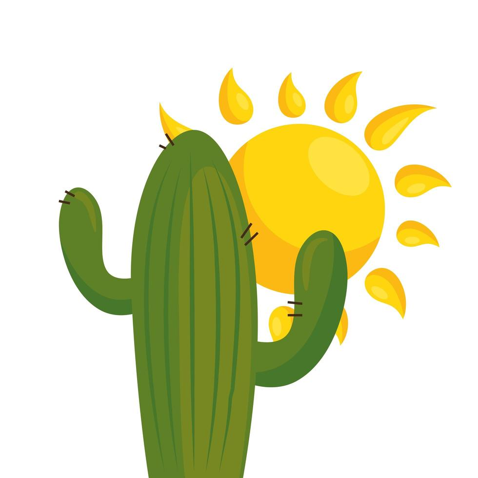 geïsoleerde cactus plant en zon vector design