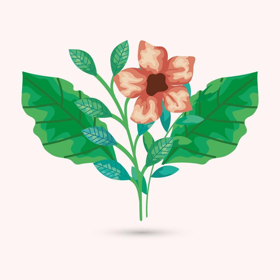 bruin bloem en bladeren vectorontwerp vector