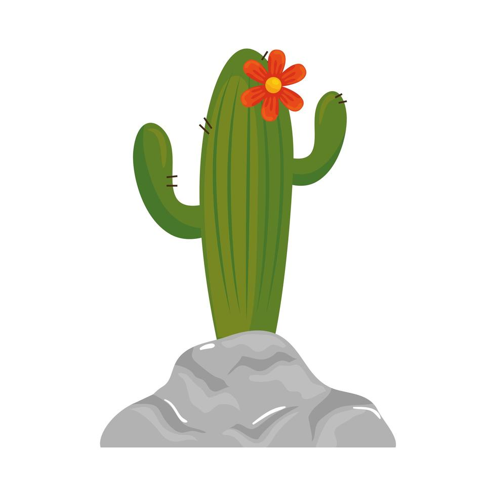 geïsoleerde cactus plant met bloem vector design