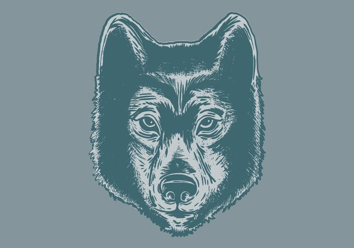 wolfshoofdportret vector