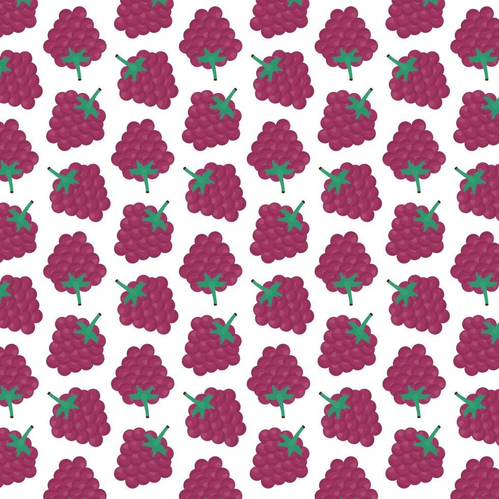 patroon van frambozen vector
