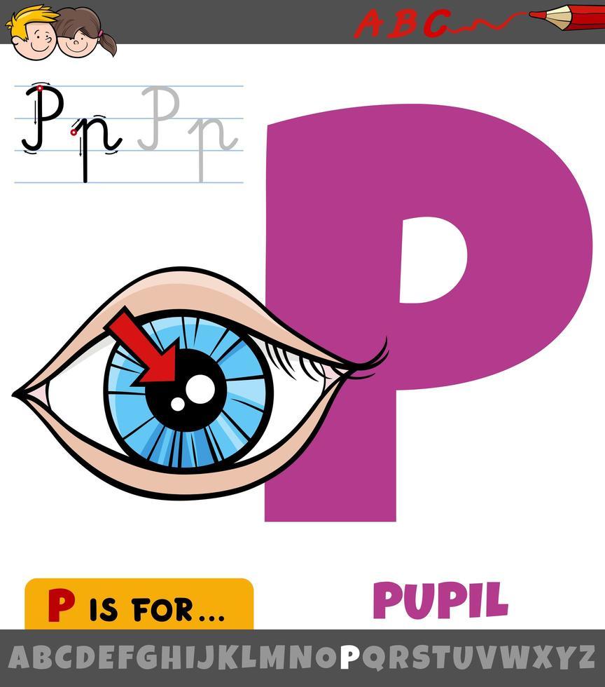 letter p uit alfabet met pupil van het oog vector
