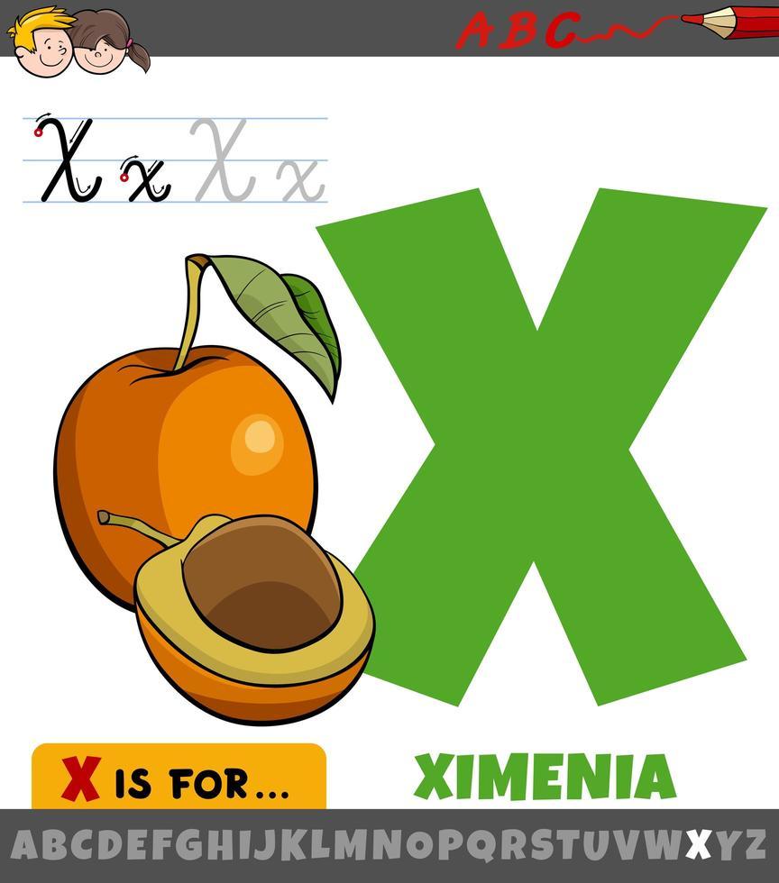 letter x werkblad met cartoon ximenia fruit vector