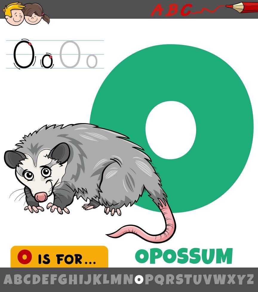 letter o uit alfabet met opossum dier vector