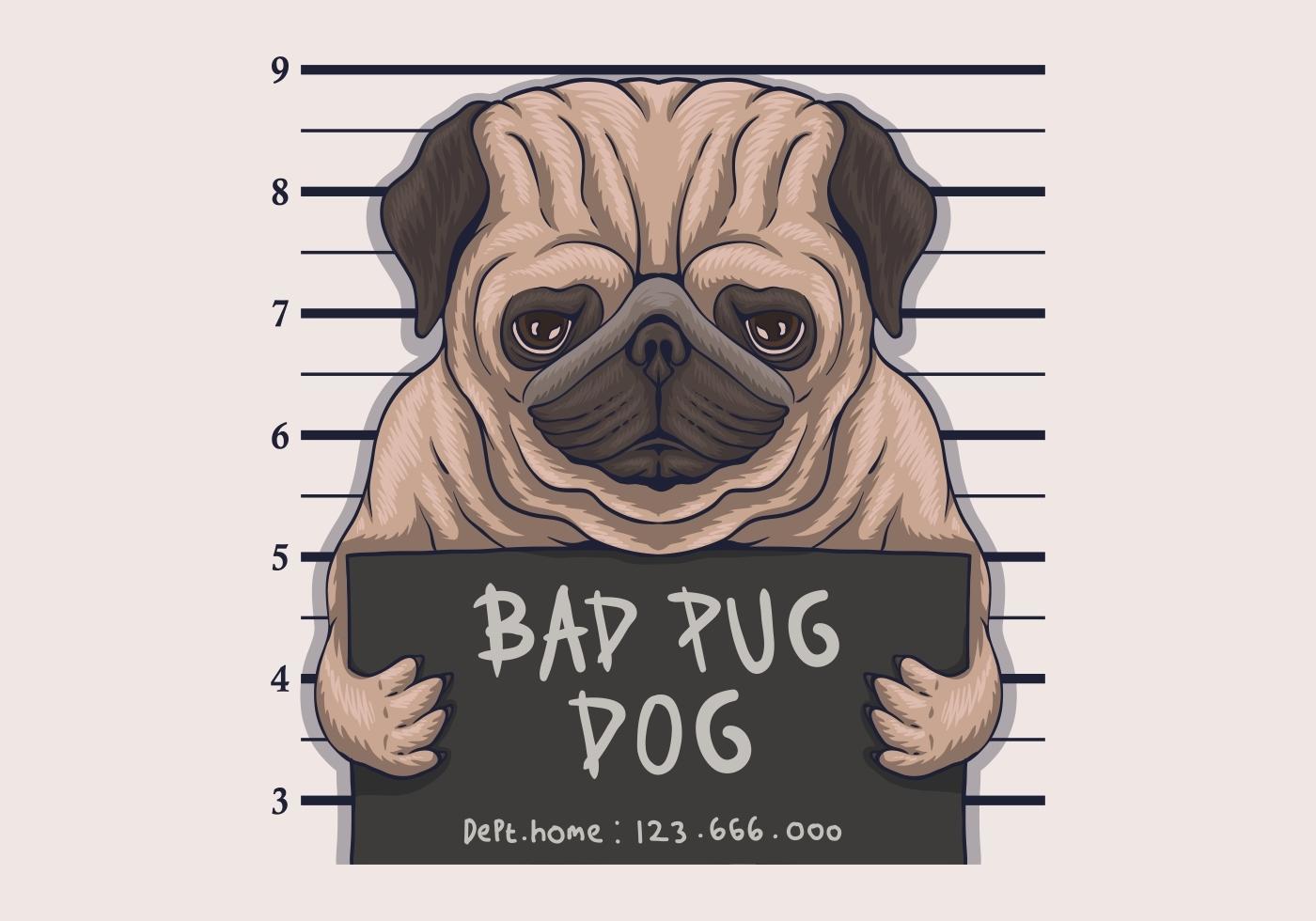 slechte pug hond misdaad vectorillustratie vector
