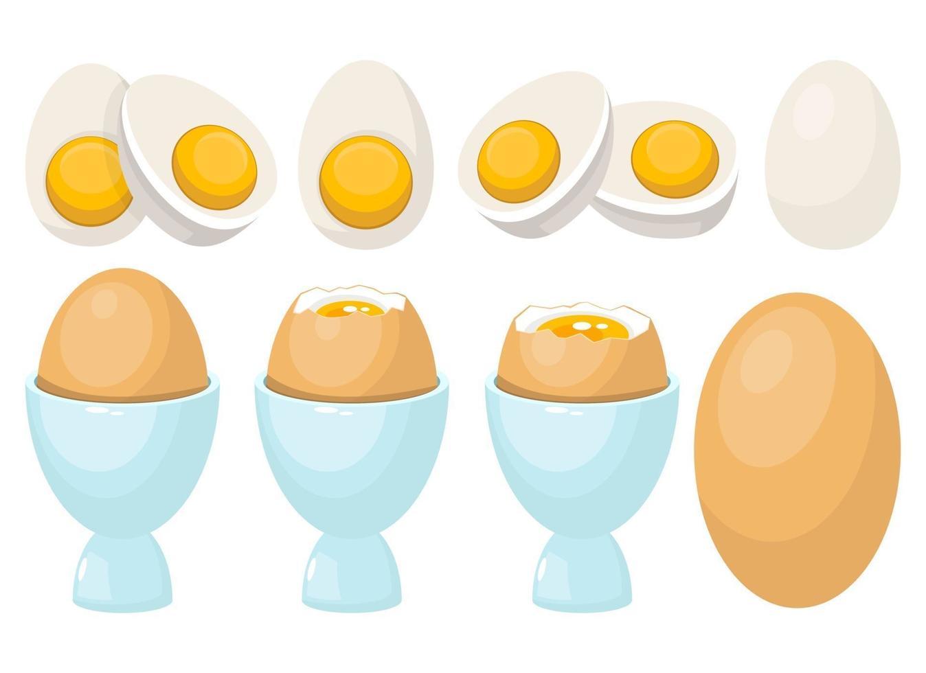 gekookt ei in ei houder vector ontwerp illustratie set geïsoleerd op een witte achtergrond