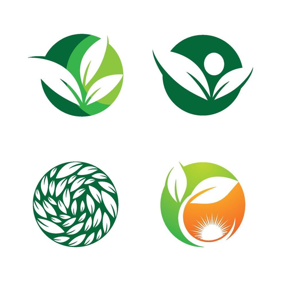 blad logo afbeeldingen vector