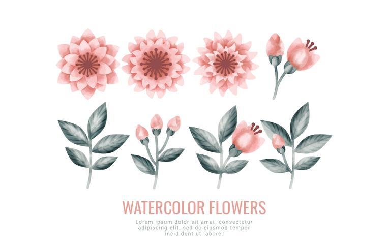 Vectorwaterverfbloemen en Takken vector