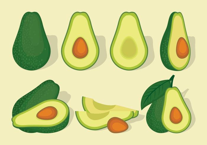 avocado vector set