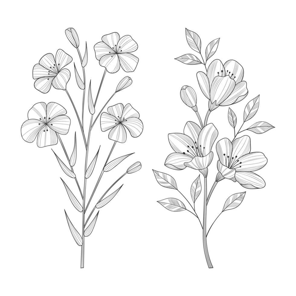 hand getrokken wilde bloemen en bladeren illustratie geïsoleerd op een witte achtergrond. vector