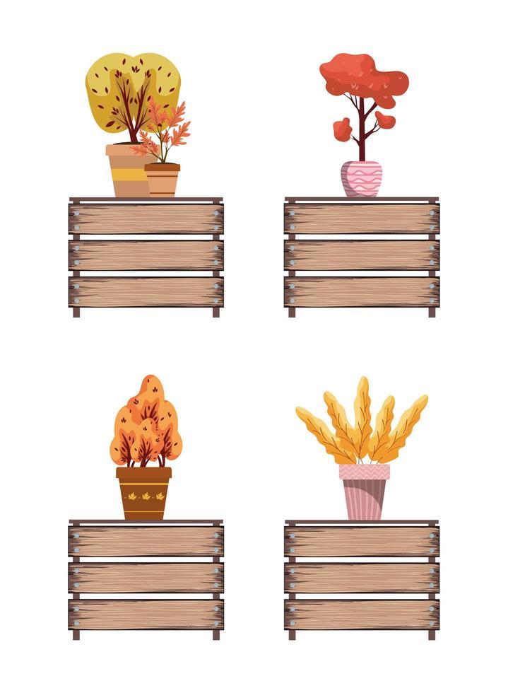 herfstplanten in keramische potten op houten tafels vector