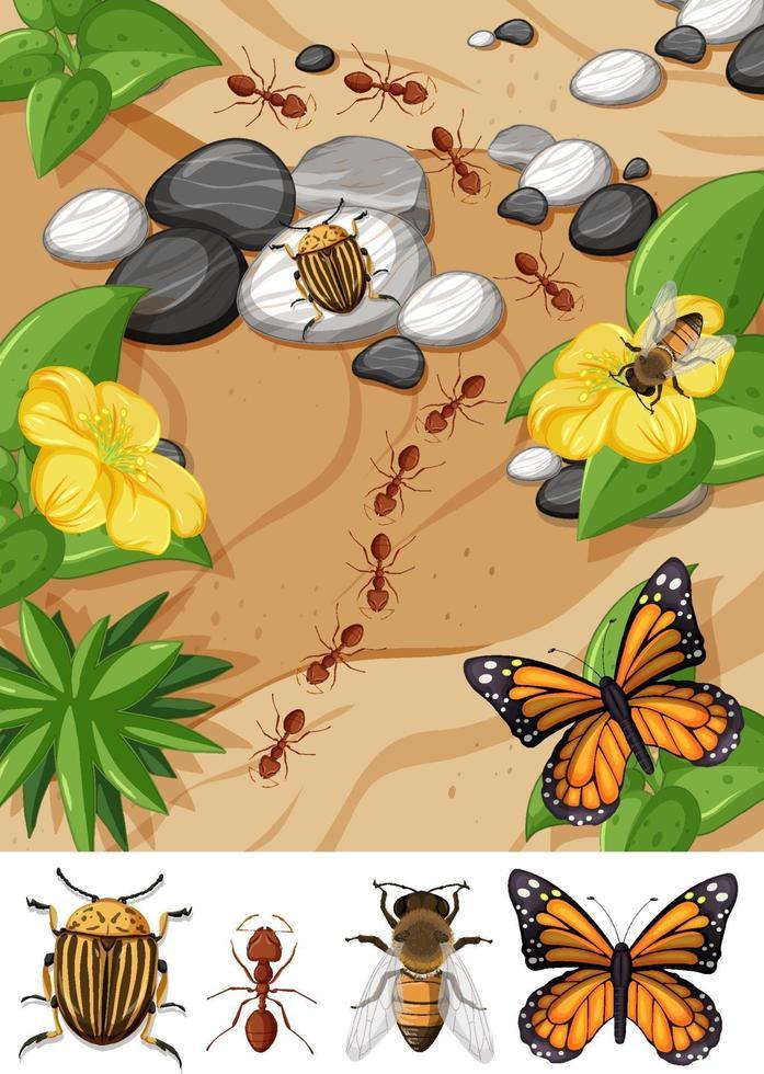 bovenaanzicht van verschillende soorten insecten in de tuinscène vector