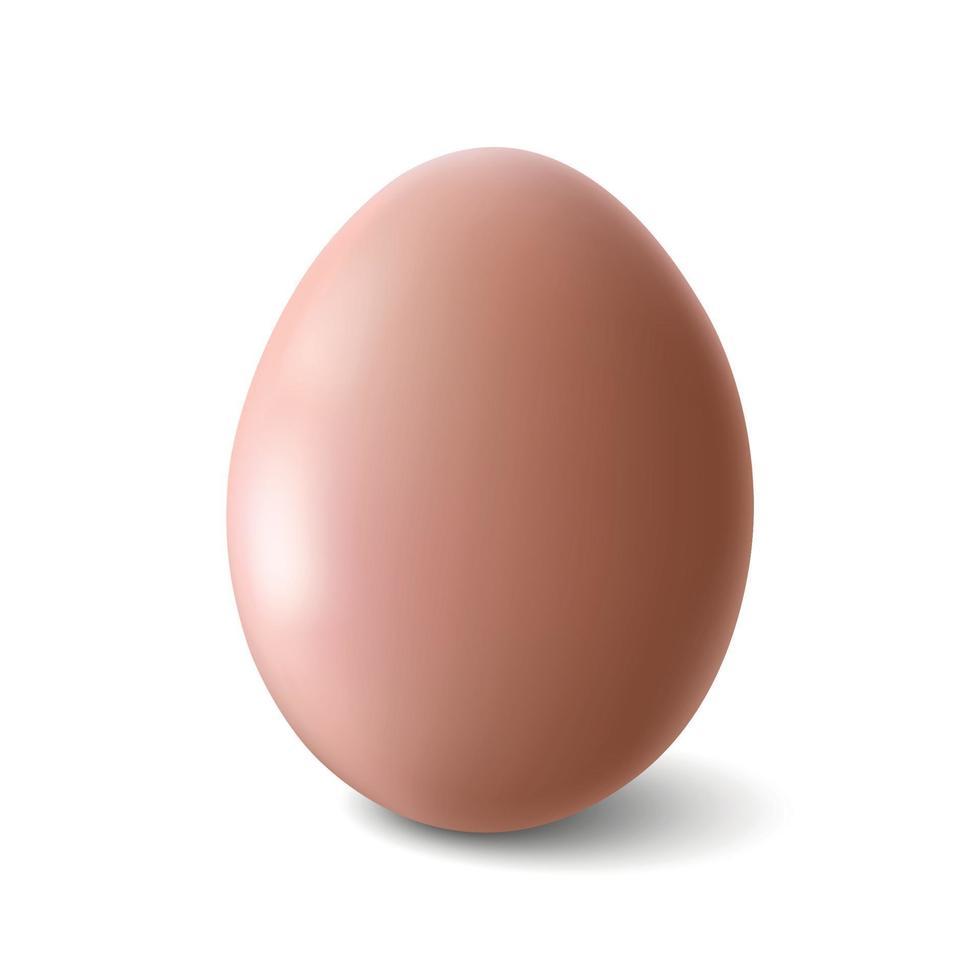 groot realistisch grijs kippenei met schaduw op witte achtergrond - vectorillustratie vector