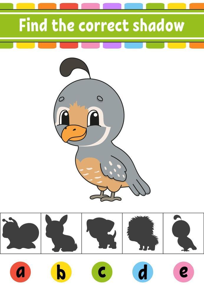vind de juiste schaduwkwartel. onderwijs ontwikkelend werkblad. activiteitenpagina. kleurenspel voor kinderen. geïsoleerde vectorillustratie. stripfiguur. vector