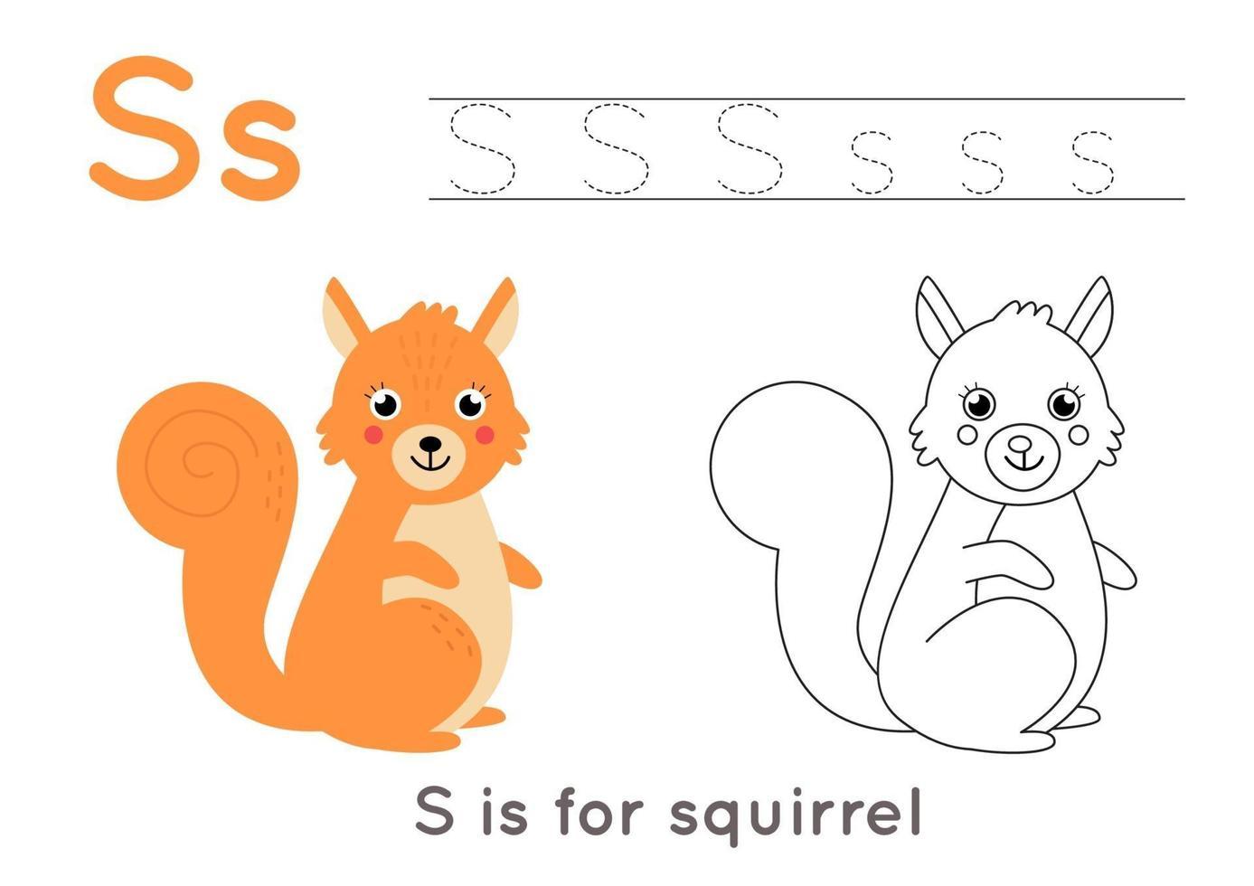 kleurplaat met letter s en schattige cartooneekhoorn. vector
