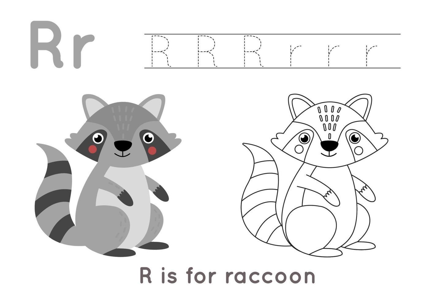kleur- en overtrekpagina met letter r en schattige cartoon wasbeer. vector