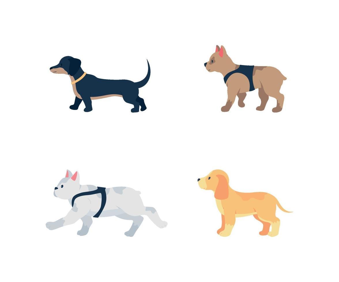 verschillende hondenrassen egale kleur vector gedetailleerde tekenset