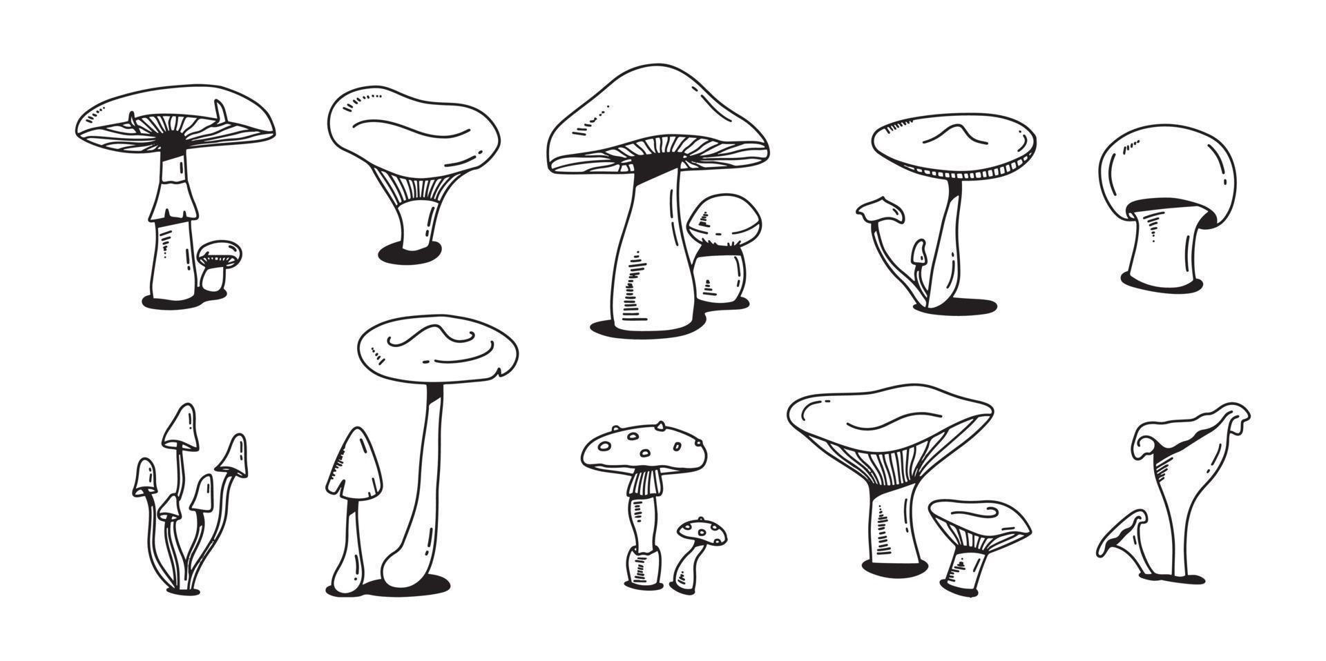 paddestoel kleurrijke doodle set. verschillende paddestoelen hand getekende platte schets. champignon, cantharellen en shiitake. vector