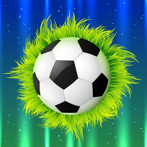 voetbal met gras vector
