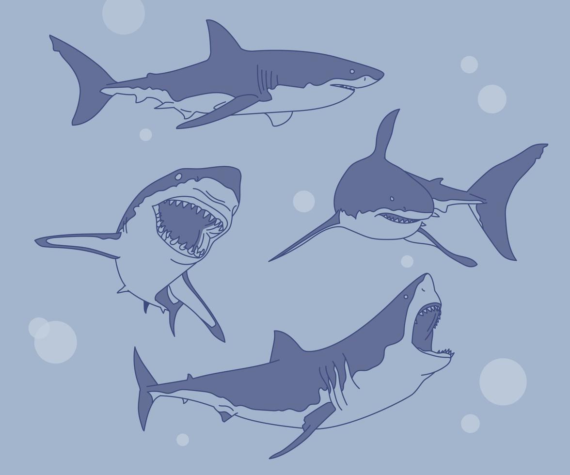 een verzameling van verschillende acties van haaien. hand getrokken stijl vector ontwerp illustraties.
