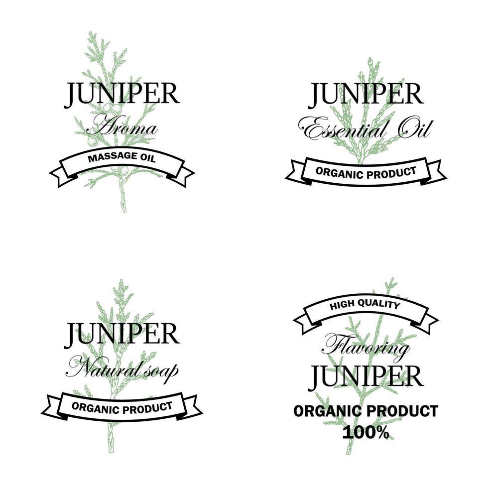 jeneverbes natuurlijke producten logo set met hand getrokken element geïsoleerd op een witte achtergrond. vectorillustratie in vintage stijl vector
