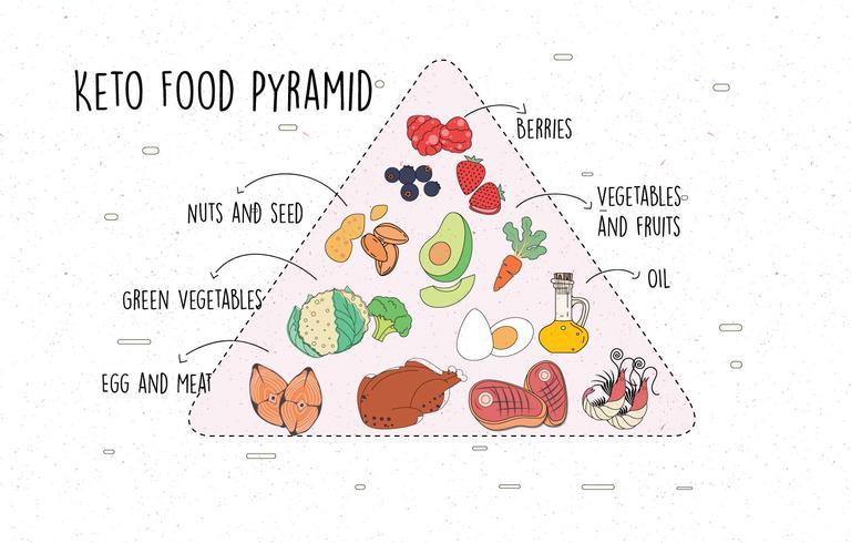 ketogenic dieet piramide vector
