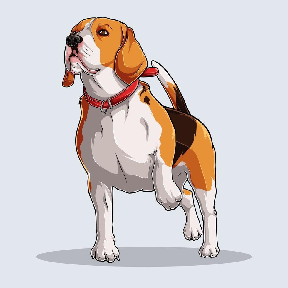 schattige beagle hond geïllustreerd met kleurrijke schaduwen en lichten geïsoleerd op een witte achtergrond vector