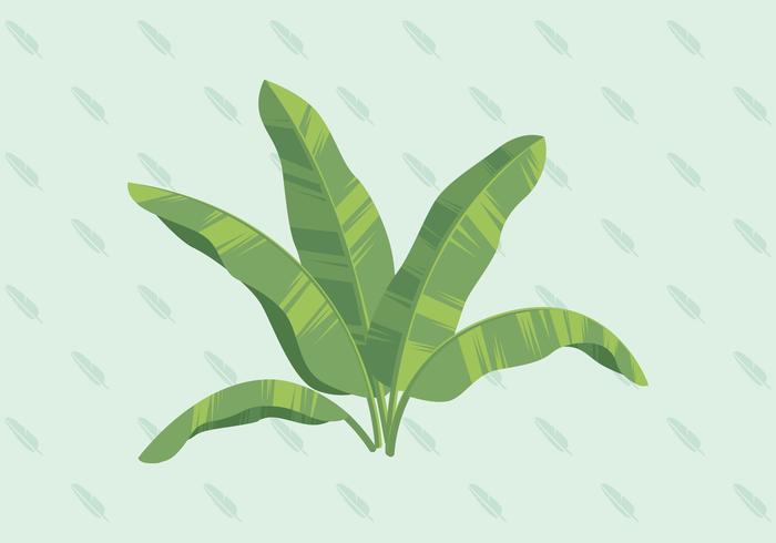 Bananenblad vectorillustratie vector
