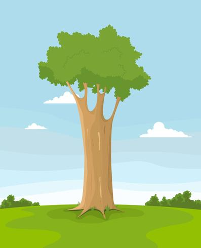 Lente boom in een veld vector