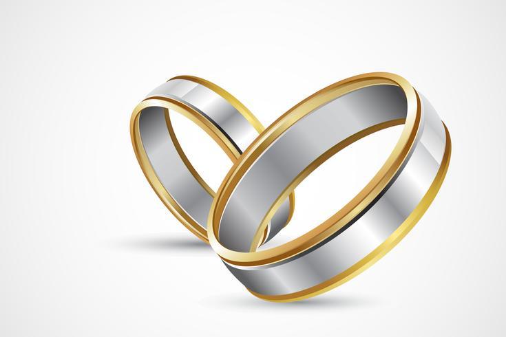 Paar ringen vector